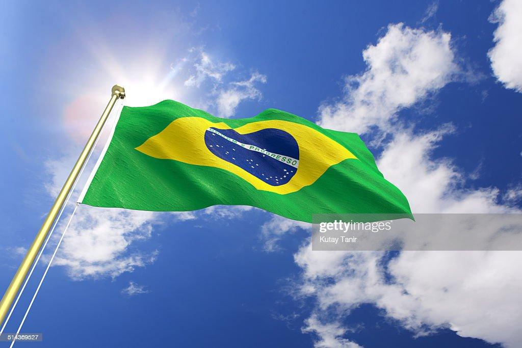 Flag of Brazil : Stock Photo