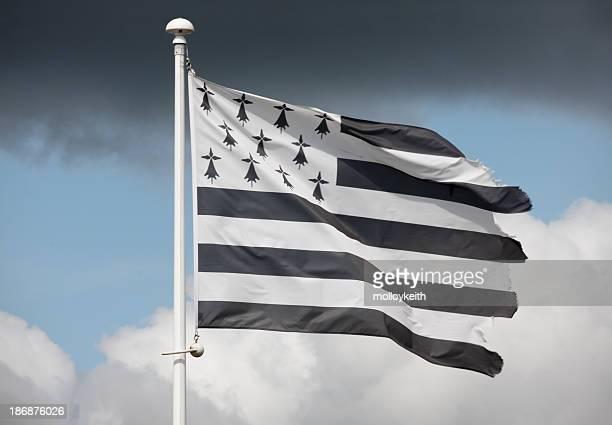 drapeau de bretagne, en france - bretagne photos et images de collection