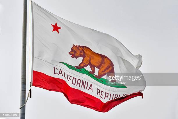 Flag of California, California, USA