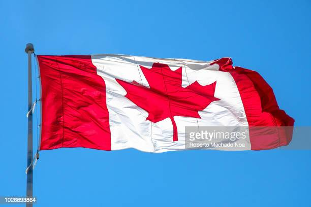 World S Best Canadian Flag Stock Pictures Photos And