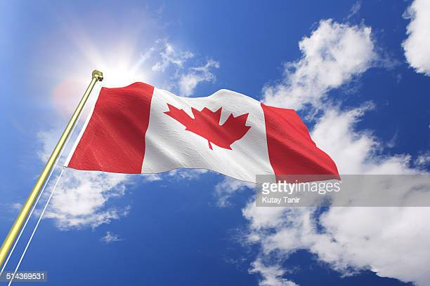 flag of canada - canadian flag stock pictures, royalty-free photos & images