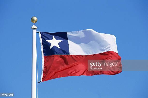 flag of chile - bandiera del cile foto e immagini stock