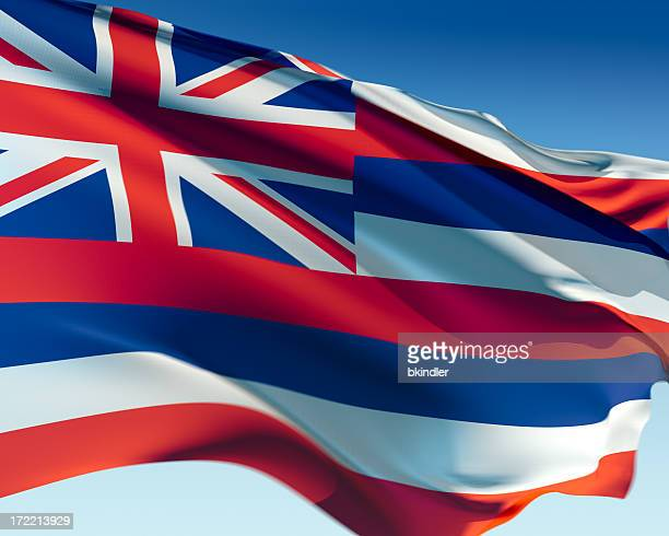 flag of hawaii - hawaii flag stock pictures, royalty-free photos & images