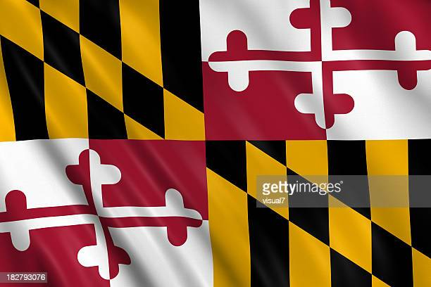 flag of maryland - flag stock pictures, royalty-free photos & images