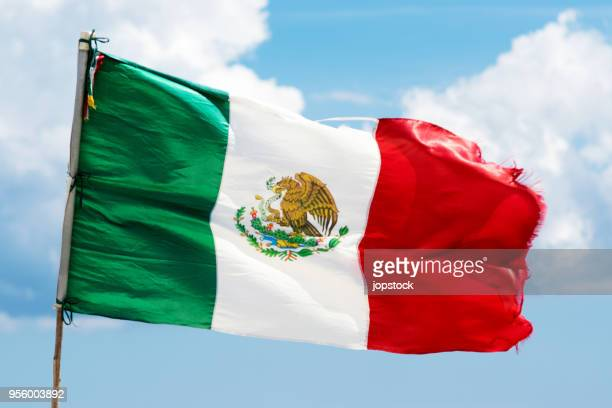 Flag of Mexico waving outdoors