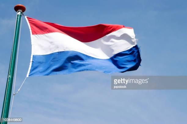 flag of netherlands waving outdoors - nederlandse vlag stockfoto's en -beelden