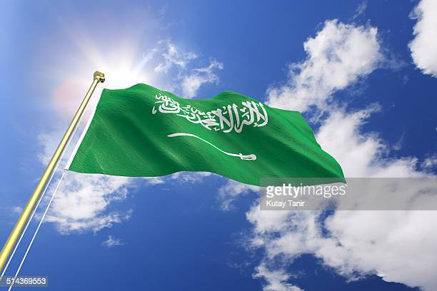 flag of saudi arabia - saudi arabian flag stock photos and pictures