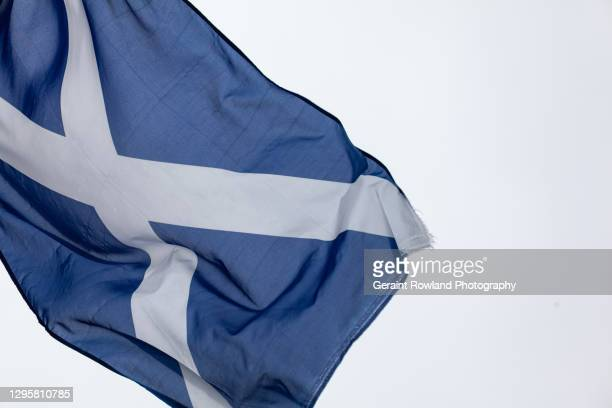 flag of scotland - scotland stock pictures, royalty-free photos & images