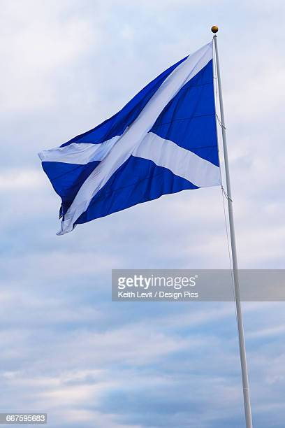 flag of scotland - flagpole stock pictures, royalty-free photos & images