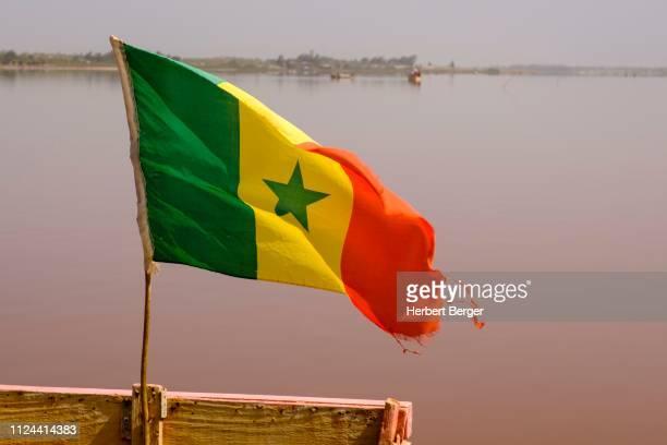 flag of senegal, lac rose, dakar region, senegal - lac rose photos et images de collection
