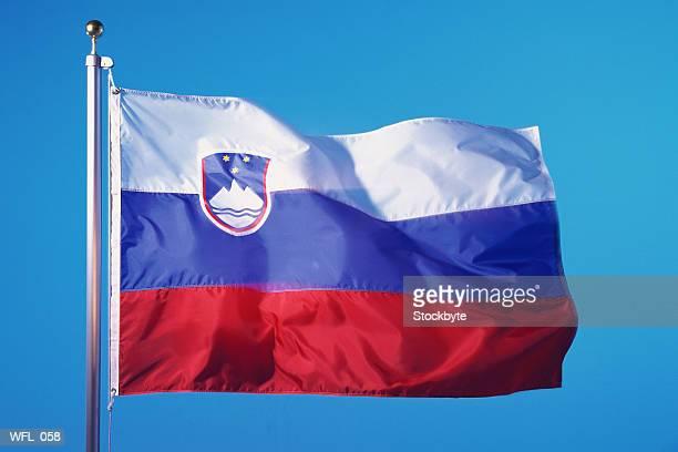 flag of slovenia - スロベニア国旗 ストックフォトと画像