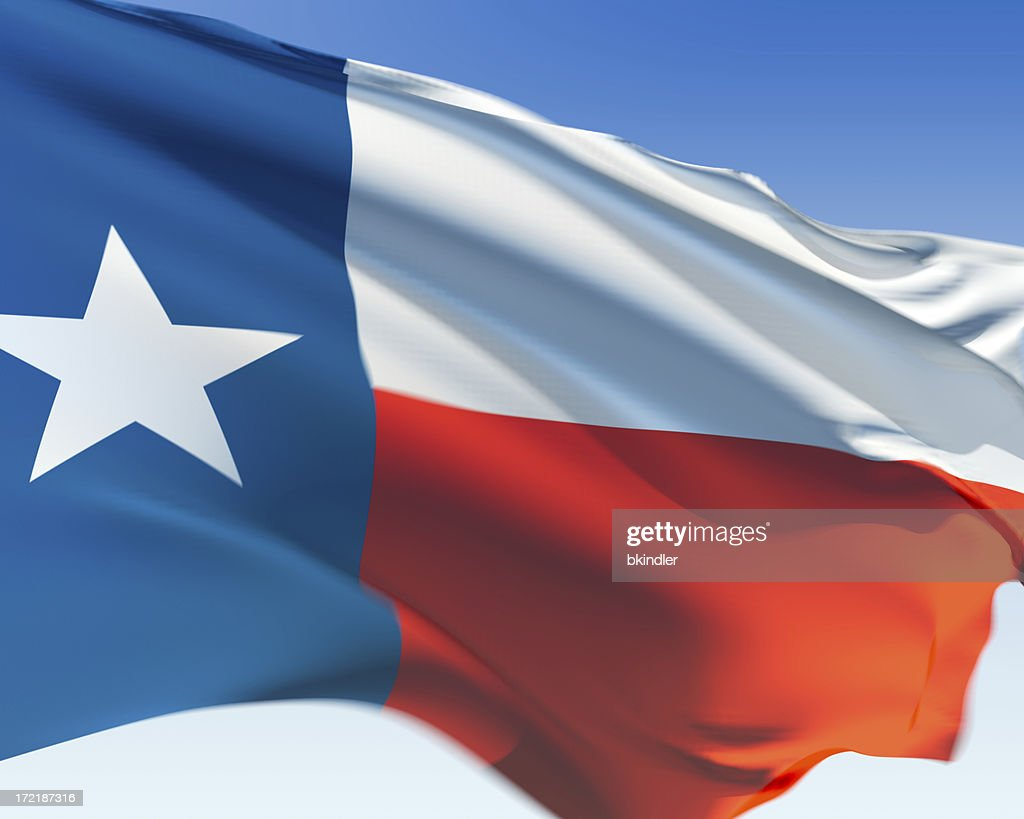 Flag of Texas : Stock Photo