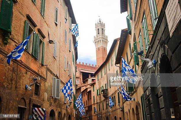 Flag of the Onda (Wave) in Contrada, Siena - Italy
