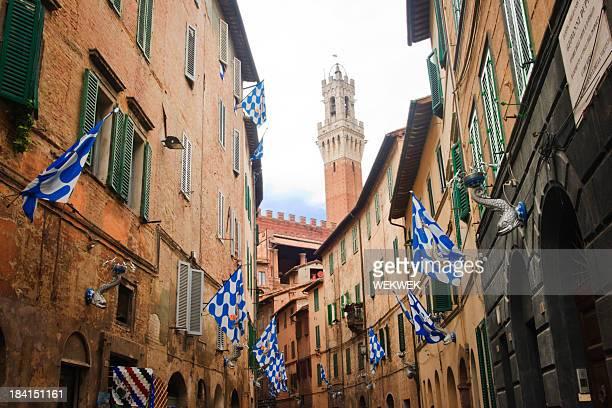 旗の「onda (ウェーブ)contrada 、シエナ、トスカーナ、イタリア - シエナ ストックフォトと画像