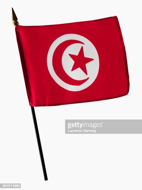 flag of tunisia - drapeau tunisien photos et images de collection
