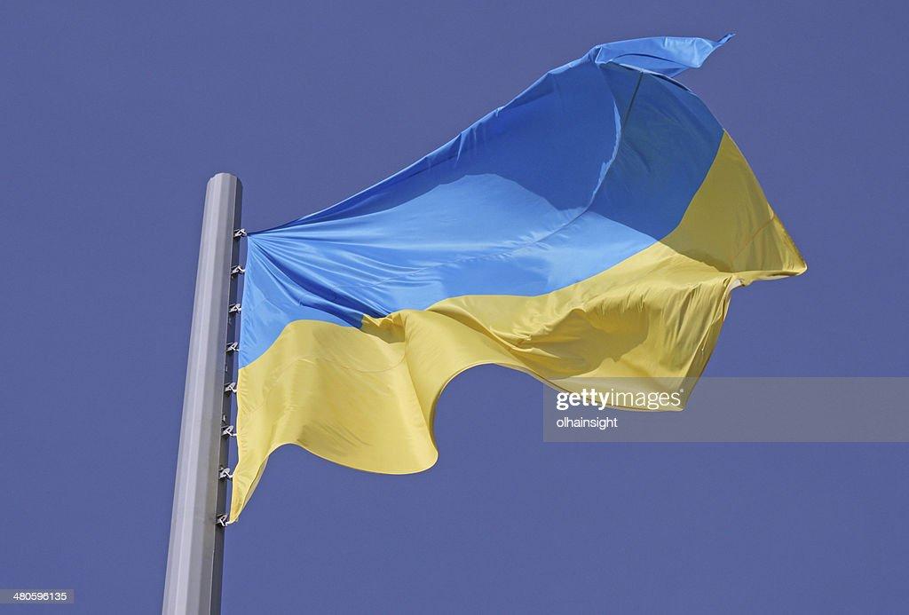 flag of Ukraine : Stock Photo
