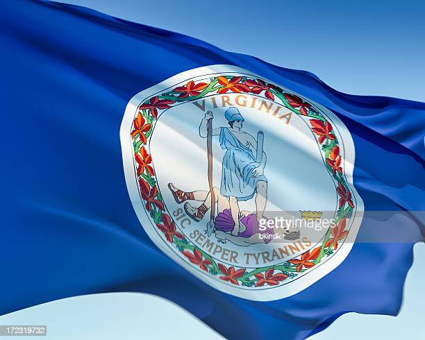 flag of virginia - virginia stock pictures, royalty-free photos & images