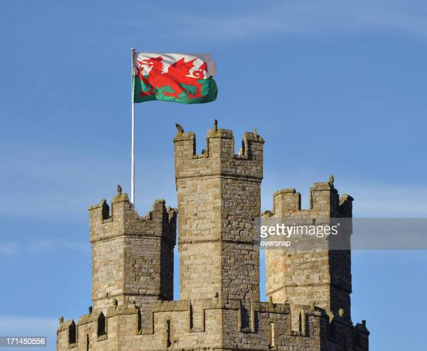 flag of wales - welsh flag stock pictures, royalty-free photos & images