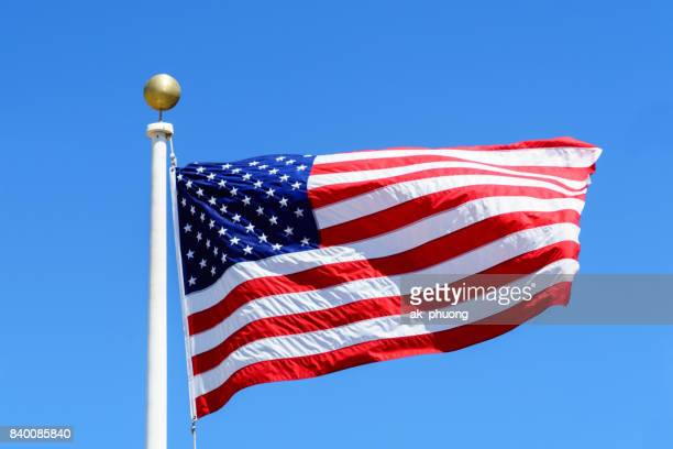 USA flag on green background