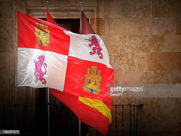 flag - カスティーリャレオン ストックフォトと画像
