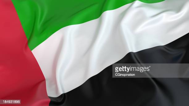 uae flag - united arab emirates flag stock photos and pictures