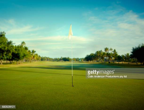 flag pole in hole on golf course - green golf course stock photos and pictures