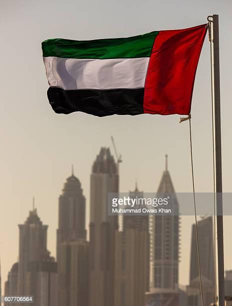 uae flag with dubai skyline - united arab emirates flag stock photos and pictures