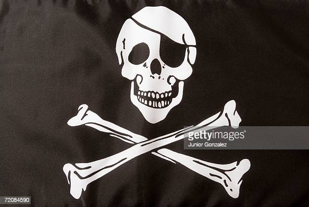 Flag with skull and crossbones