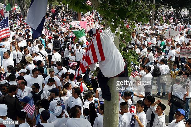A flagdraped man climbs out of a tree at a rally on what is dubbed a Day Without Immigrants or the Great American Boycott day on May 1 2006 in Los...