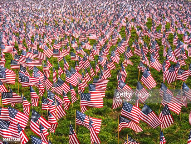 flags 01 - memorial day remembrance stock pictures, royalty-free photos & images