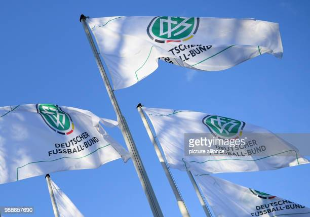 DFB flags are hoisted for the extraordinary federal conference of the German Football Association at the Frankfurt Messe fair grounds in...