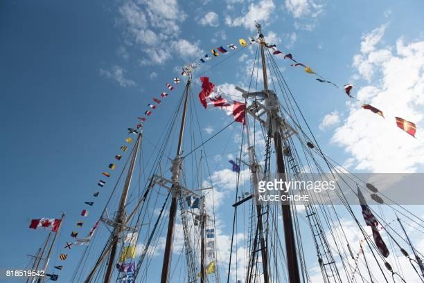 Tall Marking Flags