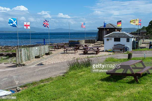 Flags by Kilchattan Bay, Bute