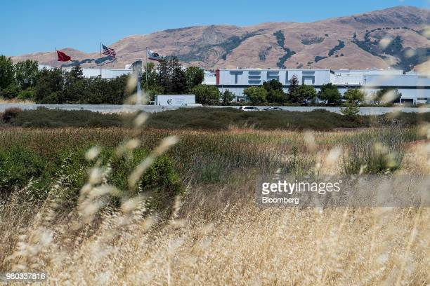 Flags fly outside the Tesla Inc manufacturing facility in Fremont California US on Wednesday June 20 2018 Tesla CEO Elon Musk said the company needed...
