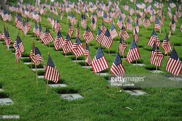 flags grave markers los angeles memorial cemetery - westwood neighborhood los angeles stock pictures, royalty-free photos & images