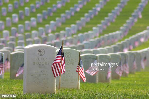 flags honor veteran 's on memorial day - rest in peace stock pictures, royalty-free photos & images