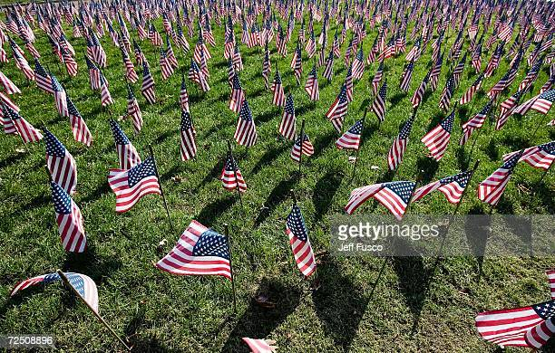 Flags line the Iraq War Flag Memorial at the Prospect Hill Cemetery November 11 2006 in York Pennsylvania More than 180 flags were added to the...