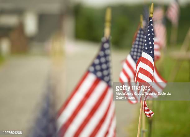 Flags line the pathway during a service at Mohnsville Cemetery in Mohnton on Memorial Day May 25 2020