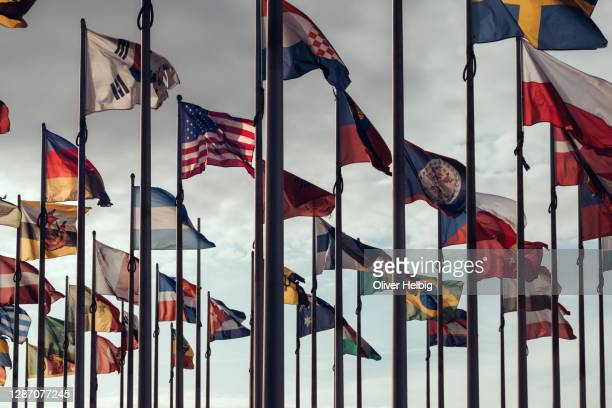 flags of different nations on high flagpoles - international match photos et images de collection