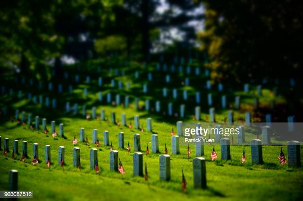 flags of our fathers - place of burial stock pictures, royalty-free photos & images