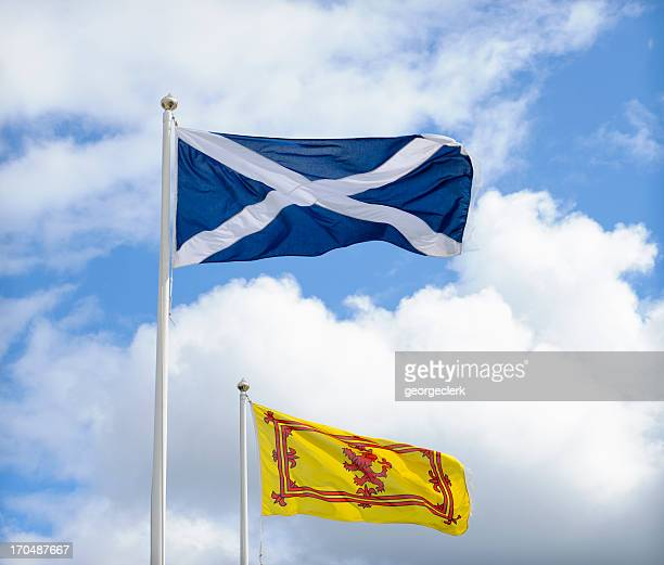 flags of scotland - scotland flag stock photos and pictures
