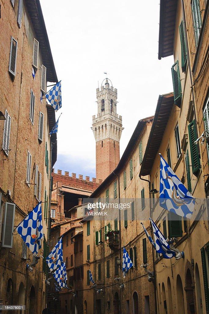 Flags of the Onda (Wave) Contrada, Siena, Tuscany, Italy : Stock Photo