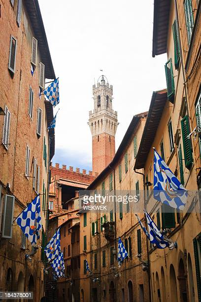 flags of the onda (wave) contrada, siena, tuscany, italy - campo stock photos and pictures
