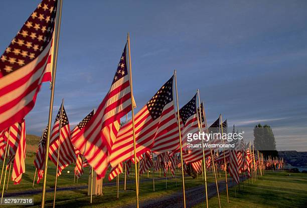 flags on memorial day - happy memorial day stock pictures, royalty-free photos & images
