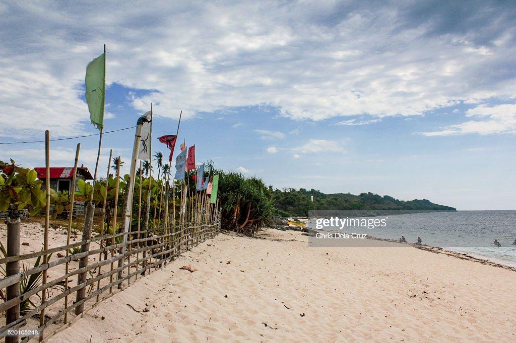 Flags on the beach coastline : Stock Photo