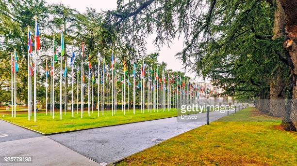 Flags Outside United Nations Headquarter
