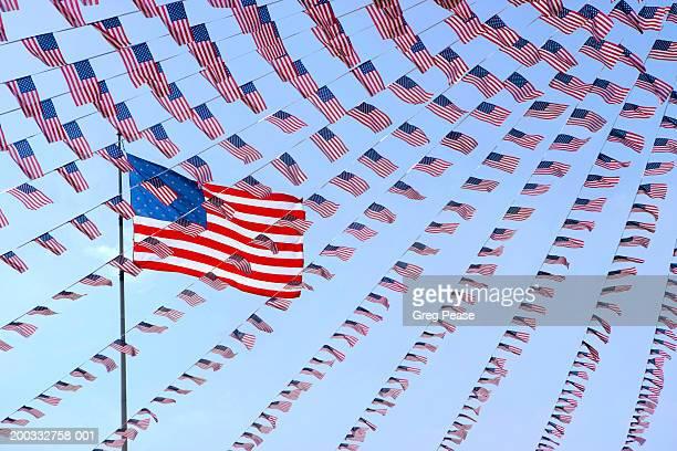 USA flags (Digital Enhancement)