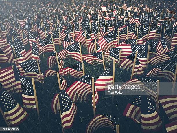 flags - armistice day stock photos and pictures