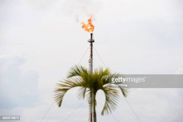 A flame from gas flare blazes on top of a flare stack at the Exxon Mobil Corp Banyu Urip Central Processing Facility in the Cepu block of Bojonegoro...