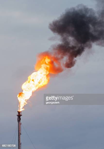 flame from large oil refinery flare stack - flare stack stock photos and pictures